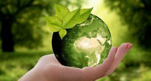 5 pequeños gestos para mejorar tu hogar y hacerlo más ecológico